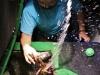 sealife sommerdusche von krake lola